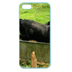 2 Full Flat Coated Retriever Apple Seamless Iphone 5 Case (color)