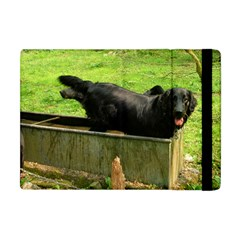 2 Full Flat Coated Retriever Apple Ipad Mini Flip Case