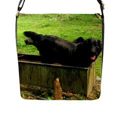 2 Full Flat Coated Retriever Flap Messenger Bag (l)