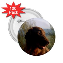 Flat Coated Retriever 2 25  Buttons (100 Pack)