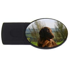 Flat Coated Retriever Usb Flash Drive Oval (2 Gb)