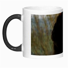 Flat Coated Retriever Morph Mugs