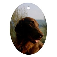 Flat Coated Retriever Oval Ornament (two Sides)
