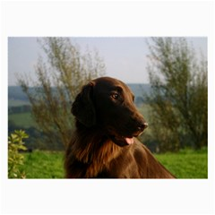 Flat Coated Retriever Large Glasses Cloth (2 Side)