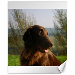 Flat Coated Retriever Canvas 11  X 14