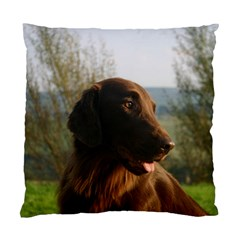Flat Coated Retriever Standard Cushion Case (two Sides)