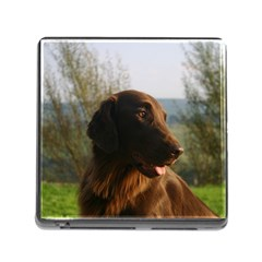 Flat Coated Retriever Memory Card Reader (square)