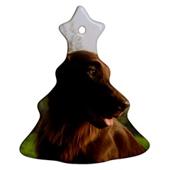 Flat Coated Retriever Christmas Tree Ornament (two Sides)