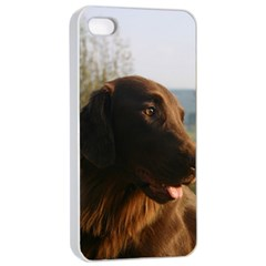 Flat Coated Retriever Apple Iphone 4/4s Seamless Case (white)