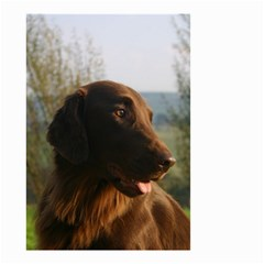 Flat Coated Retriever Small Garden Flag (two Sides)