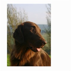 Flat Coated Retriever Large Garden Flag (two Sides)
