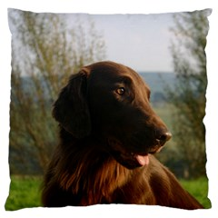 Flat Coated Retriever Large Cushion Case (one Side)