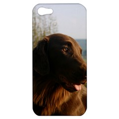 Flat Coated Retriever Apple Iphone 5 Hardshell Case