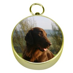 Flat Coated Retriever Gold Compasses