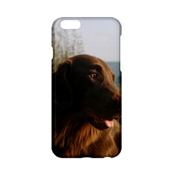 Flat Coated Retriever Apple Iphone 6/6s Hardshell Case