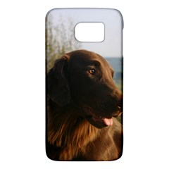 Flat Coated Retriever Galaxy S6