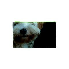 Tibetan Terrier 2 Cosmetic Bag (xs)