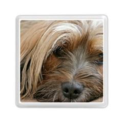 Tibetan Terrier 3 Memory Card Reader (square)