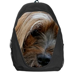 Tibetan Terrier 3 Backpack Bag