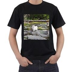 Pekingese Full Men s T Shirt (black) (two Sided)