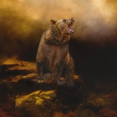 Roaring Grizzly Bear Magic Photo Cubes