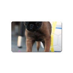 Brussels Griffon Front View Magnet (name Card)
