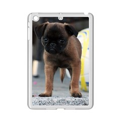 Brussels Griffon Front View Ipad Mini 2 Enamel Coated Cases