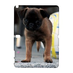 Brussels Griffon Front View Galaxy Note 1