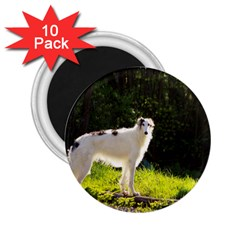 Borzoi In Woods 2 25  Magnets (10 Pack)