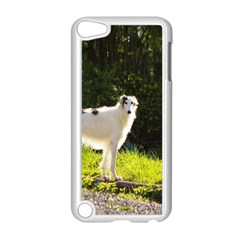 Borzoi In Woods Apple Ipod Touch 5 Case (white)