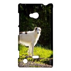 Borzoi In Woods Nokia Lumia 720