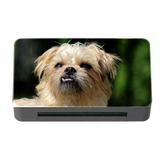 Brussels Griffon Memory Card Reader With Cf