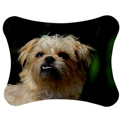 Brussels Griffon Jigsaw Puzzle Photo Stand (bow)