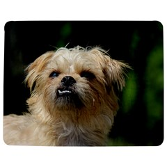 Brussels Griffon Jigsaw Puzzle Photo Stand (rectangular)