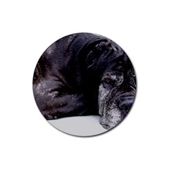 Neapolitan Mastiff Laying Rubber Round Coaster (4 Pack)