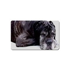 Neapolitan Mastiff Laying Magnet (name Card)