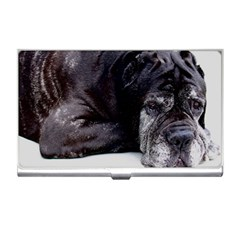 Neapolitan Mastiff Laying Business Card Holders