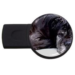 Neapolitan Mastiff Laying Usb Flash Drive Round (4 Gb)