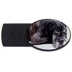 Neapolitan Mastiff Laying Usb Flash Drive Oval (4 Gb)