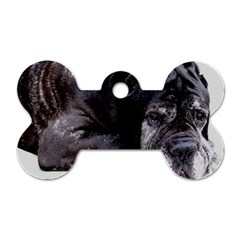 Neapolitan Mastiff Laying Dog Tag Bone (two Sides)