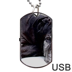 Neapolitan Mastiff Laying Dog Tag Usb Flash (two Sides)