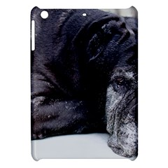 Neapolitan Mastiff Laying Apple Ipad Mini Hardshell Case