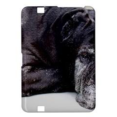 Neapolitan Mastiff Laying Kindle Fire Hd 8 9