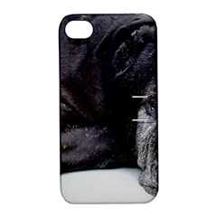 Neapolitan Mastiff Laying Apple Iphone 4/4s Hardshell Case With Stand