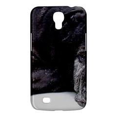 Neapolitan Mastiff Laying Samsung Galaxy Mega 6 3  I9200 Hardshell Case