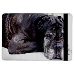 Neapolitan Mastiff Laying Ipad Air 2 Flip
