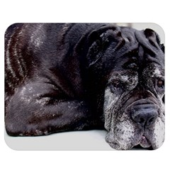Neapolitan Mastiff Laying Double Sided Flano Blanket (medium)
