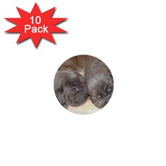 Neapolitan Pups 1  Mini Buttons (10 Pack)