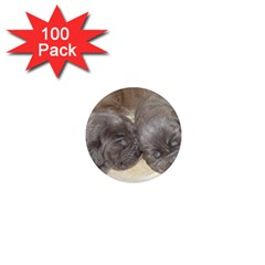 Neapolitan Pups 1  Mini Magnets (100 Pack)