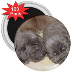 Neapolitan Pups 3  Magnets (100 Pack)